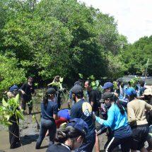 Aquatic Care: Memulihkan Kelestarian Ekosistem Bahari Pesisir Bali