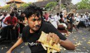 Aci Tabuh Rah Pengangon : Tradisi Penangkal Paceklik dari Desa Adat Kapal